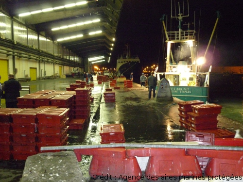 P che et aquaculture l 39 eau dans le bassin artois picardie - Amenagement bassin poisson boulogne billancourt ...